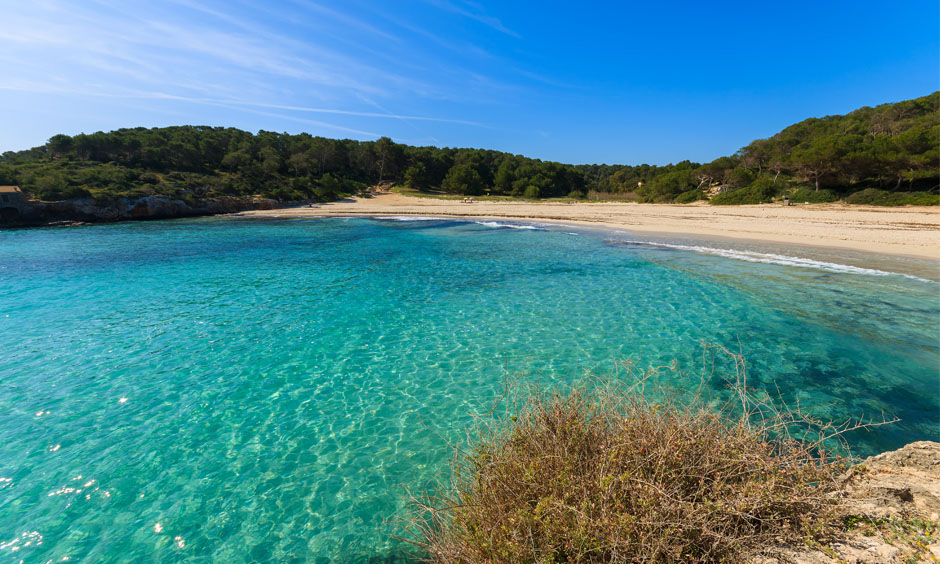 Eng Pabisa Hotel Beach Mallorca Cala Mondrago