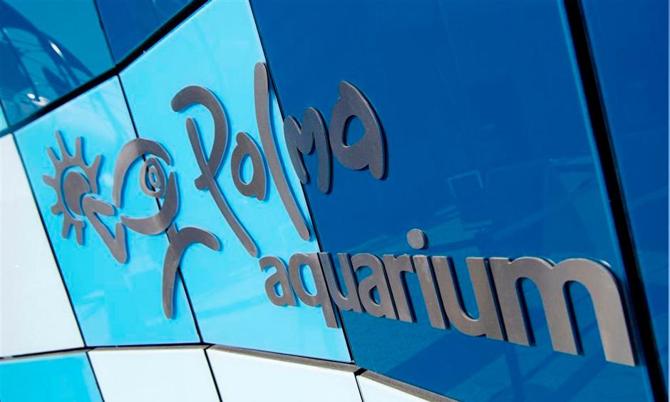 Pabisa Hotels Palma Aquarium