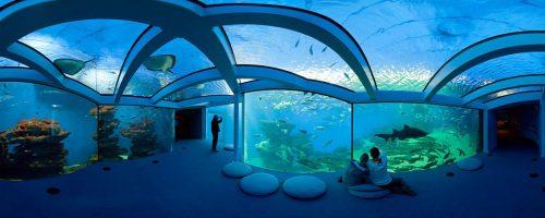 EN F Pabisa Hotel Palma Aquarium Spring