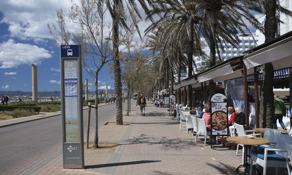 Pabisa Hotels Bike Ride Arenal Palma