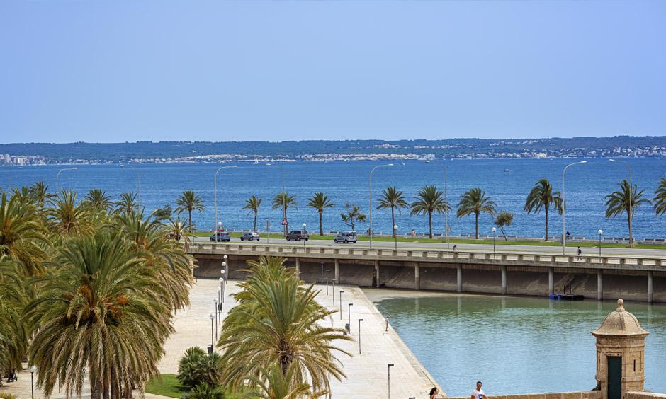 Pabisa Hotels Bike ride to Palma