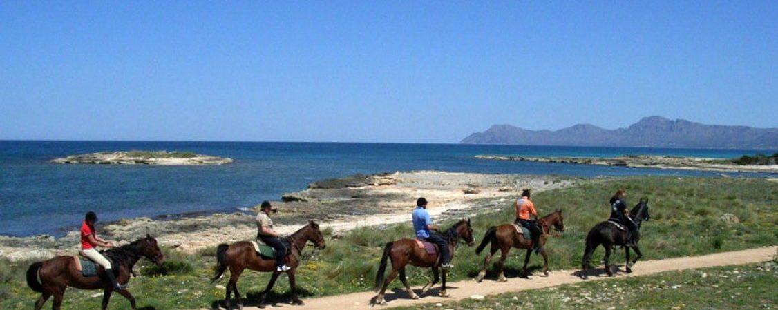 Paseos a caballo en Mallorca: deporte y naturaleza a la vez