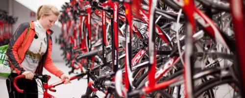 mejores vacaciones ciclistas mallorca hotel arenal pabisa bikes