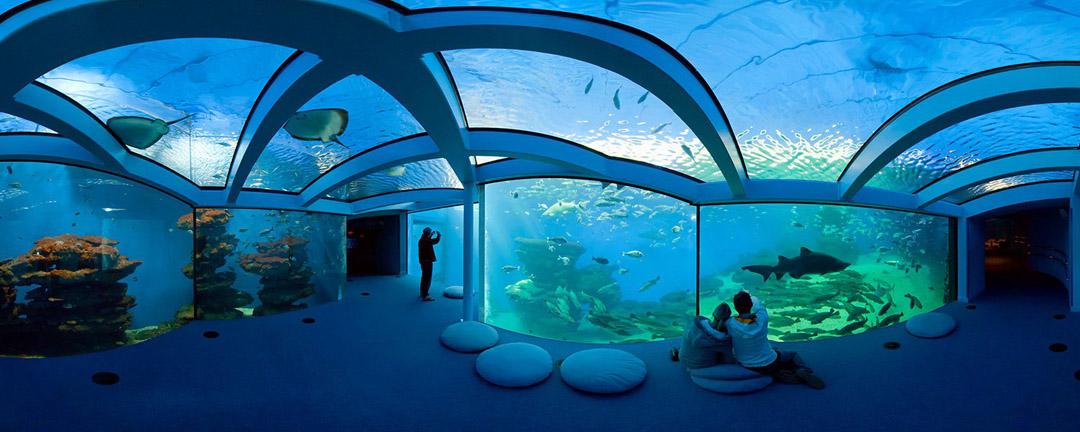 El mejor acuario de Mallorca: Palma Aquarium